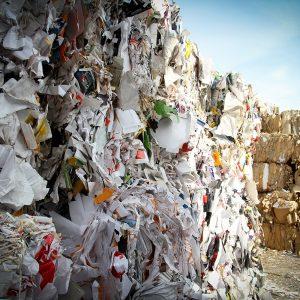 waste-removal-through-skip-bin-hire-zinc